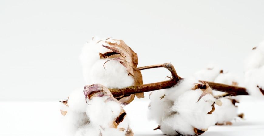 Beneficios del algodón orgánico para los bebés